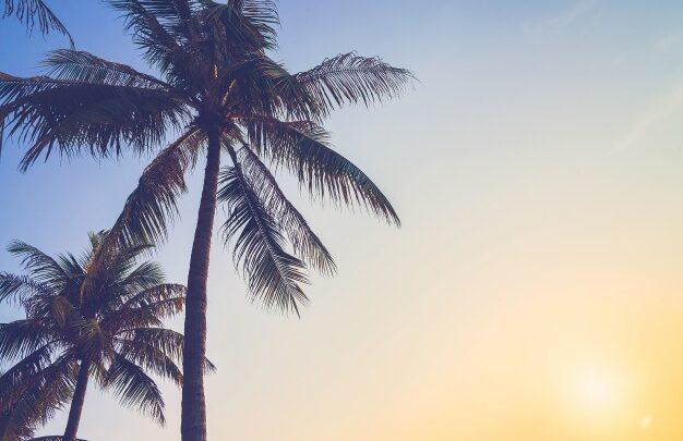 Vale à pena morar na Praia Grande?